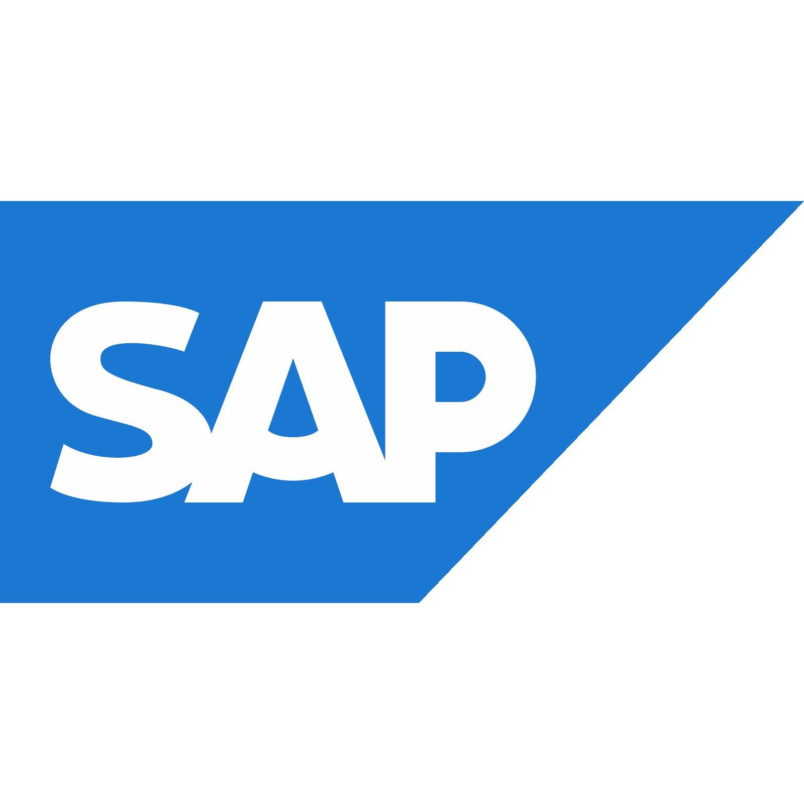 Сотрудничество Армена Манукяна с компанией SAP